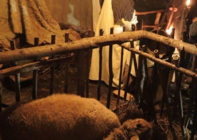 Presepe vivente e grotte di Equi la notte di Natale