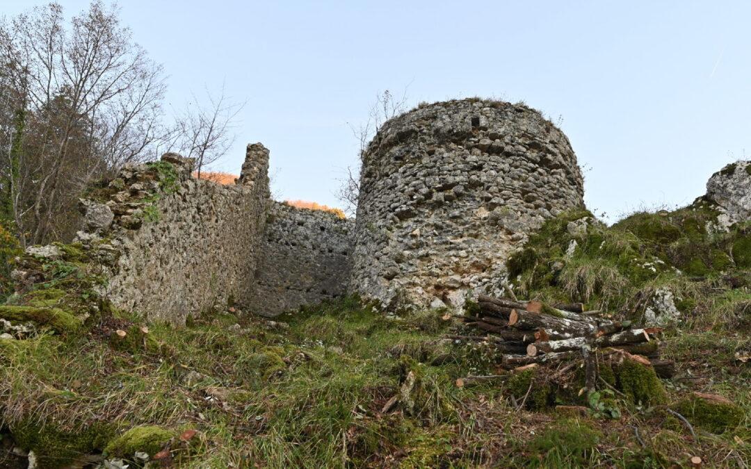 Il castello nel parco riemerge dal bosco.