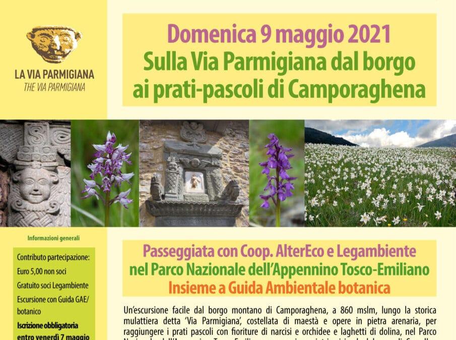 Escursione della biodiversità • 9 maggio 2021, Camporaghena (Comano MS)